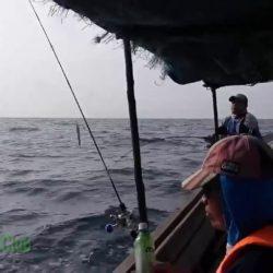 Paket Wisata Bintan Sambil Memancing Ikan Laut